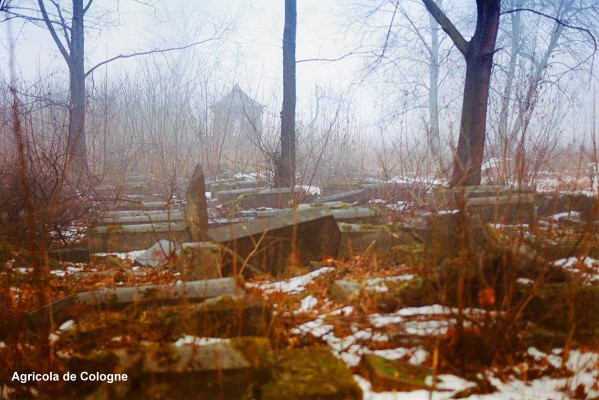 Jewish Cemetry Bialystok/Poland  by Agricola de Cologne
